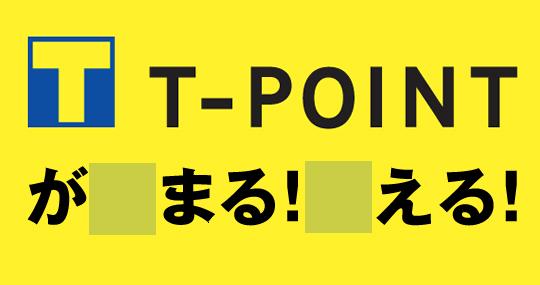 t-point1