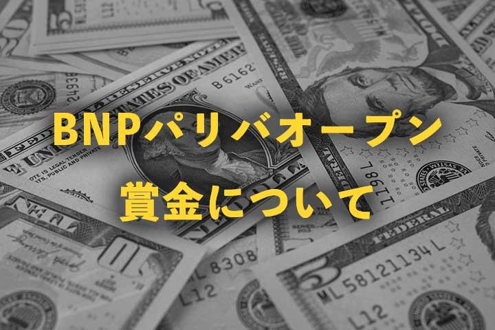 BNPパリバオープン2020の賞金はいくら?|総額、優勝賞金、日本円内訳と過去の賞金額推移