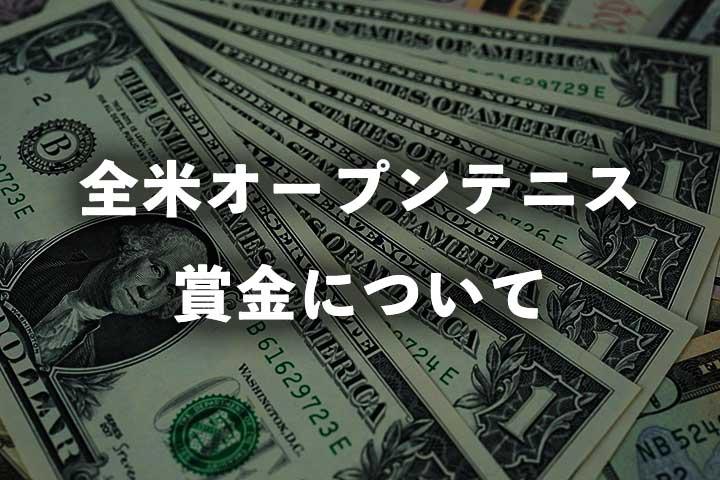 全米オープンテニスの賞金はいくら?|2021年大会の総額、優勝賞金、日本円内訳と過去の賞金額推移
